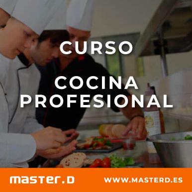 Curso Cocina Profesional Formacion De Cocineros Y Chefs
